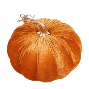 Other - Velvet Fall Pumpkin